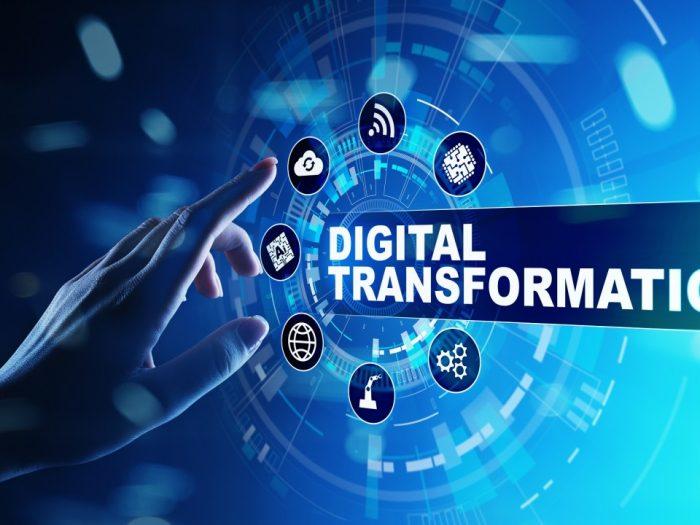 pachete anis digitalizare