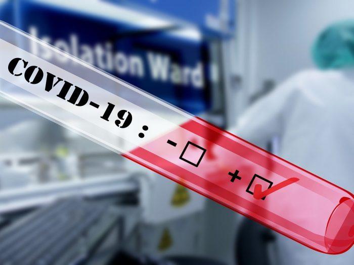 SAS lansează o aplicație gratuită prin care cercetătorii pot analiza rapid zeci de mii de lucrări științifice despre COVID-19
