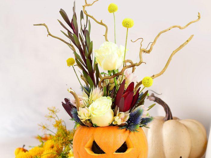 Halloween_Floria1