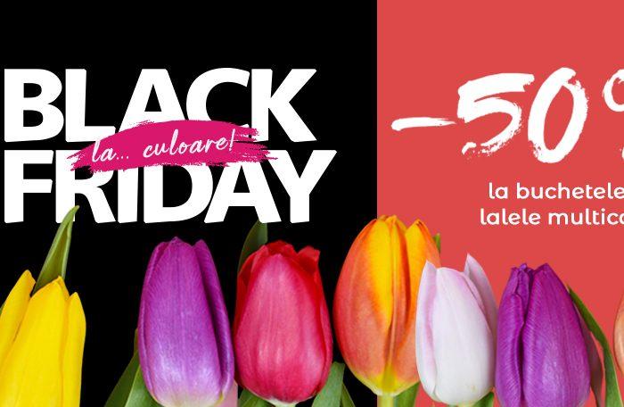 Floria Black Friday 2020